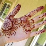 easy pakistani shaded mehndi design