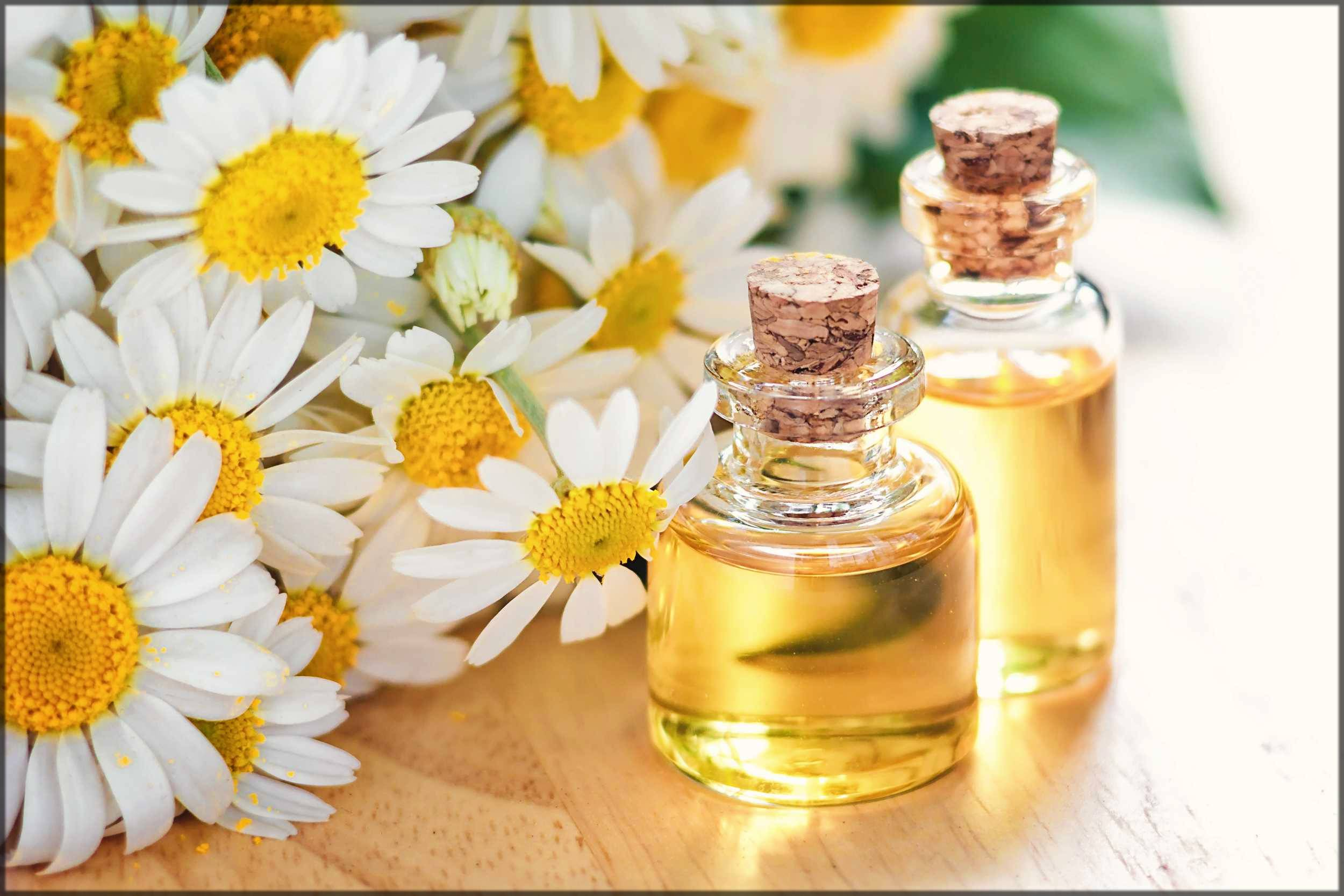 Top 10 Best Natural And Herbal Beauty Tips For Glowing Skin