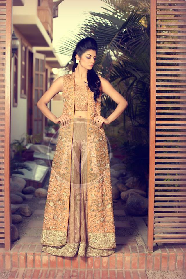 Heavy embroidered Gown for fancy occasions