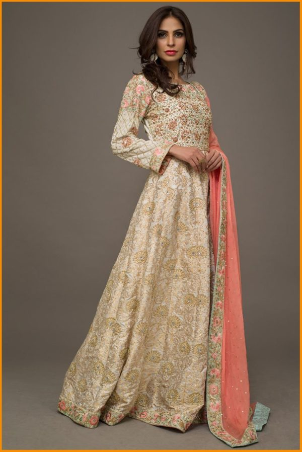 Latest Pakistani Fashion Wedding Guest Dresses 2019